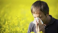 אלרגיה (אילוסטרציה)